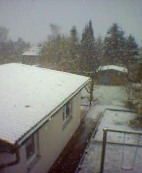 Erster Schnee 3