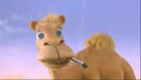Nur ein Kamel geht meilenweit für eine Zigarette